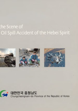 at the scene of the oil spill accident of the hebei spirit
