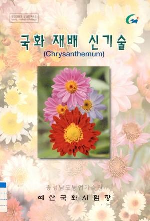 국화재배신기술(chrysanthemum)